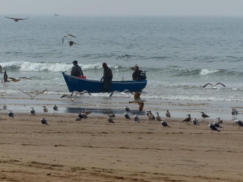 pécheur sur la plage de taghazout